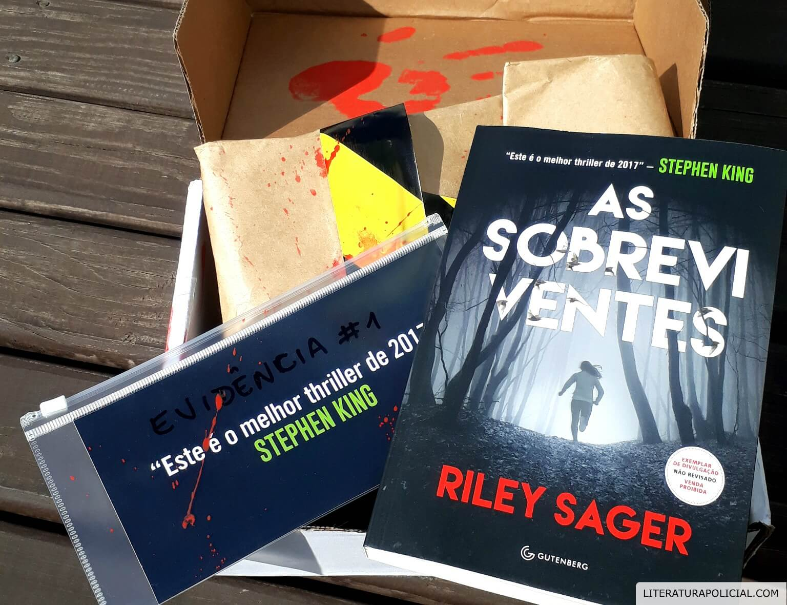RESENHA | As sobreviventes, Riley Sager